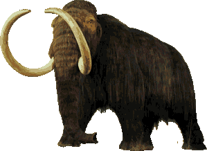 America Before Columbus - wolly mammoth